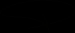 امضا کارگزار موسسه محنا